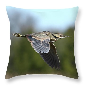 Le Butor Throw Pillow by Denis Dumoulin