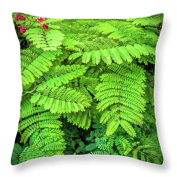 Throw Pillow featuring the photograph Leaves by Charuhas Images