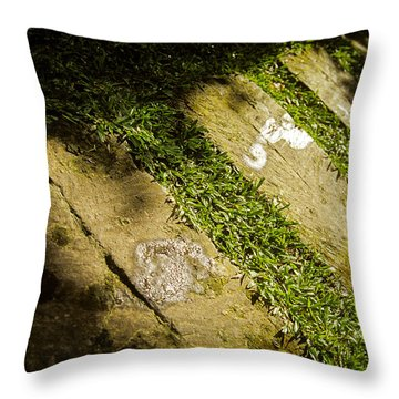 Light Footsteps In The Garden Throw Pillow