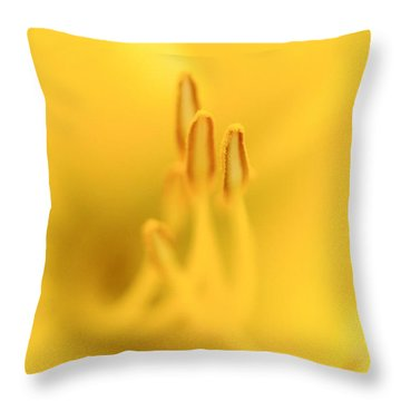 Lily Inside Throw Pillow by Tim Good