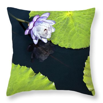 Throw Pillow featuring the photograph Lily Love by Suzanne Gaff