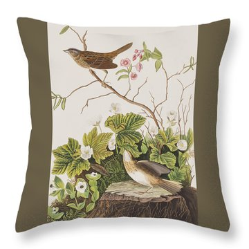 Lincoln Finch Throw Pillow by John James Audubon