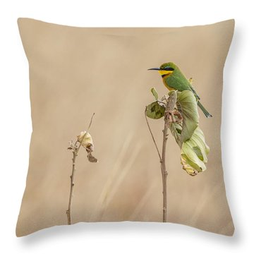 Little Bee-eater Throw Pillow by Kathy Adams Clark