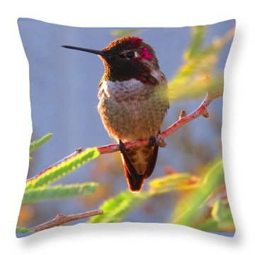 Little Jewel With Wings Sixth Version Throw Pillow