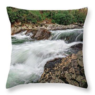 Throw Pillow featuring the photograph Little River  by Alan Raasch