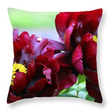 Throw Pillow featuring the photograph Living Large by Deborah  Crew-Johnson