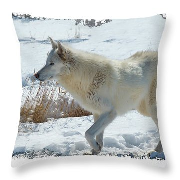 Lone White Wolf Throw Pillow