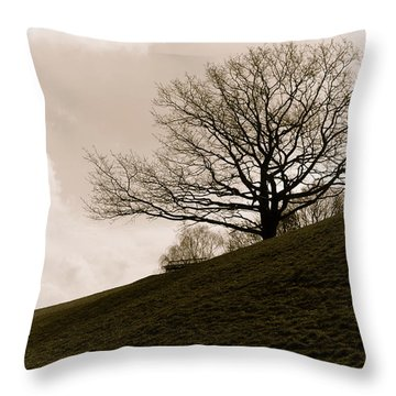 Lonely Tree Throw Pillow by Sergey Simanovsky