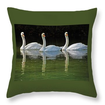 Look Over There Throw Pillow by Judy Wanamaker