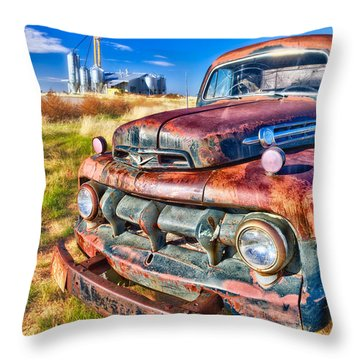 Throw Pillow featuring the photograph Looking For Work  by Daniel George
