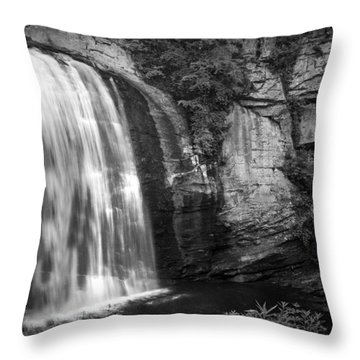 Throw Pillow featuring the photograph Looking Glass Falls by Howard Salmon