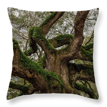 Looking Up..... Throw Pillow