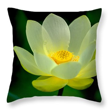 Lotus Blossom Throw Pillow