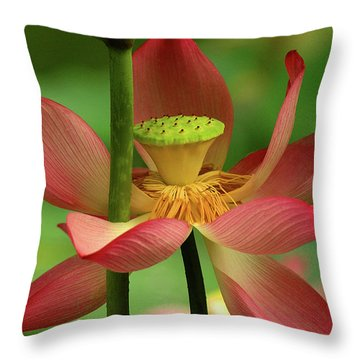 Lotus Flower Throw Pillow by Harry Spitz