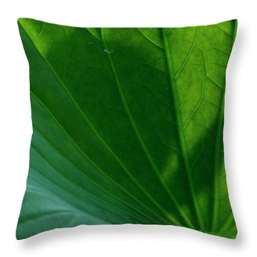 Throw Pillow featuring the photograph Lotus Leaf 2017 3 by Buddy Scott
