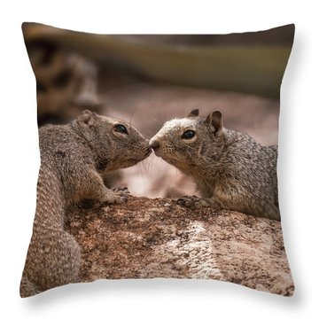 Throw Pillow featuring the photograph Love Is In The Air  by Saija Lehtonen