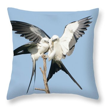 Love Lizard Throw Pillow by Jim Gray