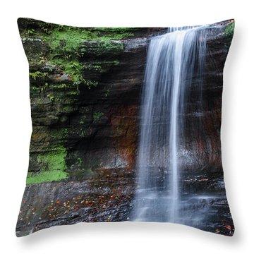 Lower Dells Falls Matthiessen State Park Oglesby Illinois Throw Pillow