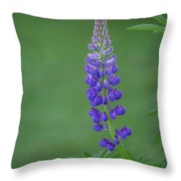 Graceful Lupine Throw Pillow