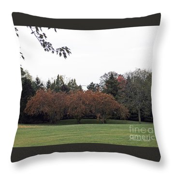 M Landscapes Fall Collection No. Lf68 Throw Pillow
