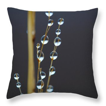 Macro Drops Throw Pillow
