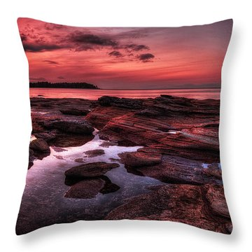 Madrona Throw Pillow by Randy Hall