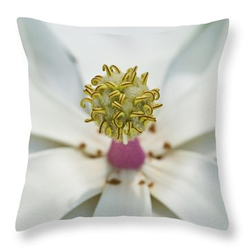 Magnolia Bloom Throw Pillow by Rich Franco