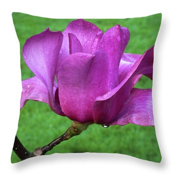 Magnolia Throw Pillow by Catherine Lau
