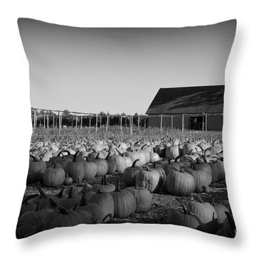 Make Way For Pumpkins Throw Pillow