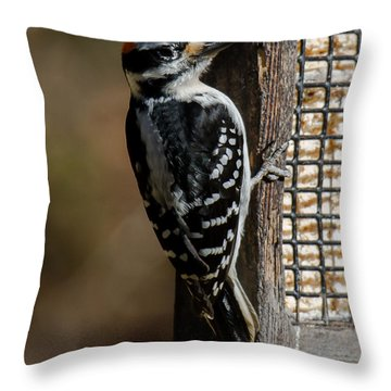 Throw Pillow featuring the photograph Male Hairy Woodpecker by Robert L Jackson