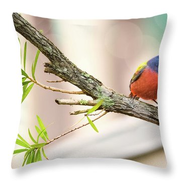 Male Painted Bunting Throw Pillow