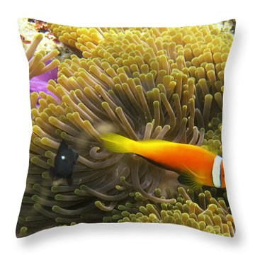 Throw Pillow featuring the photograph Maledives Clown Fish by Juergen Held