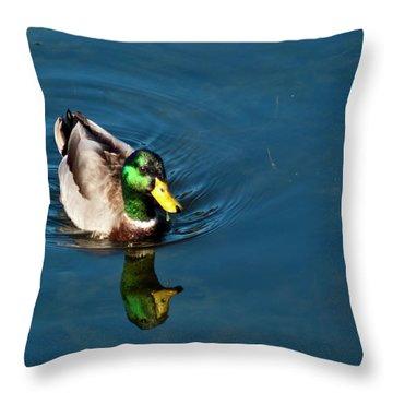 Throw Pillow featuring the photograph Mallard by Bill Barber