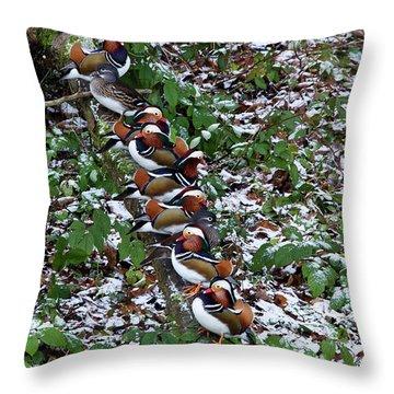 Mandarin Ducks Throw Pillow