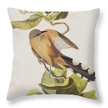 Mangrove Cuckoo Throw Pillow