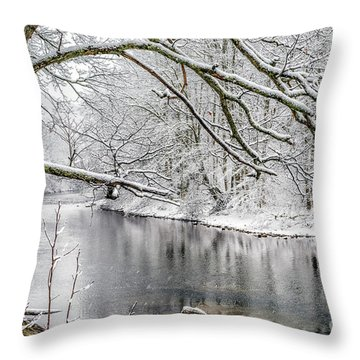 Throw Pillow featuring the photograph March Snow Along Cranberry River by Thomas R Fletcher