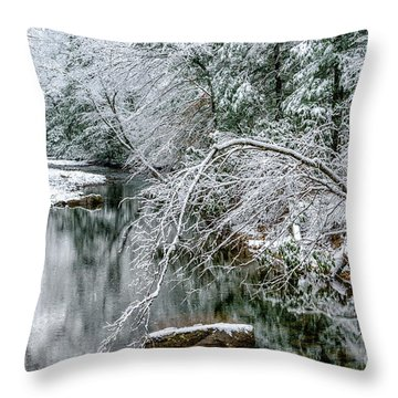 Throw Pillow featuring the photograph March Snow Cranberry River by Thomas R Fletcher