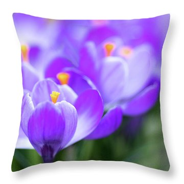 Throw Pillow featuring the photograph Marching Into Spring by Rebecca Cozart