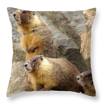 Marmot Trio Throw Pillow