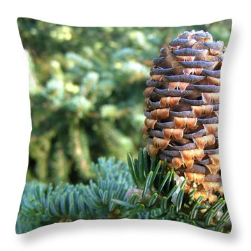 Throw Pillow featuring the photograph Masterful Construction - Spruce Cone by Angie Rea