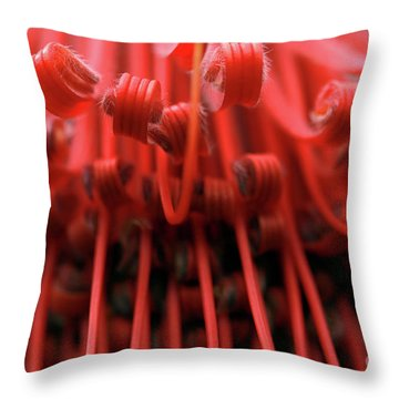 Throw Pillow featuring the photograph Merry Go 'round by Stephen Mitchell