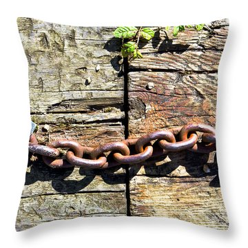 Metal Chain Throw Pillow