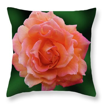 Throw Pillow featuring the photograph Michelle by Mark Blauhoefer