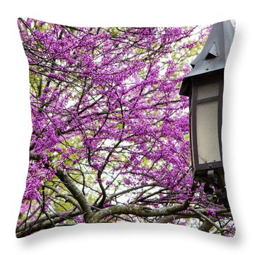 Michigan State University Spring 7 Throw Pillow by John McGraw