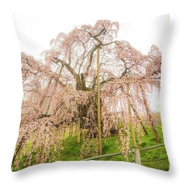 Throw Pillow featuring the photograph Miharu Takizakura Weeping Cherry02 by Tatsuya Atarashi