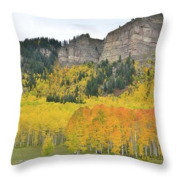 Throw Pillow featuring the photograph Million Dollar Highway Aspens by Ray Mathis