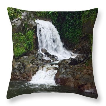 Mini Waterfall Throw Pillow