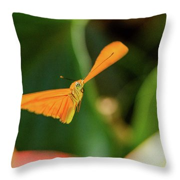 Miracle Of Flight Throw Pillow