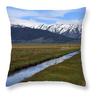 Mono County Nevada Throw Pillow