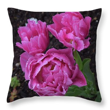 Morning Dew Drops Throw Pillow